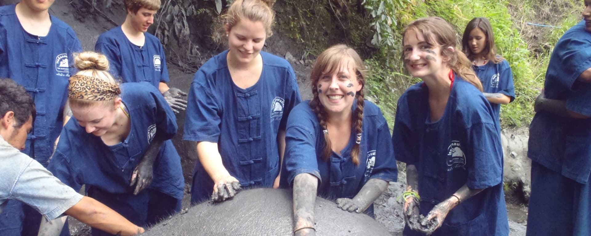 Expérience avec les éléphants à Chiang Mai: Thai Elephant Home
