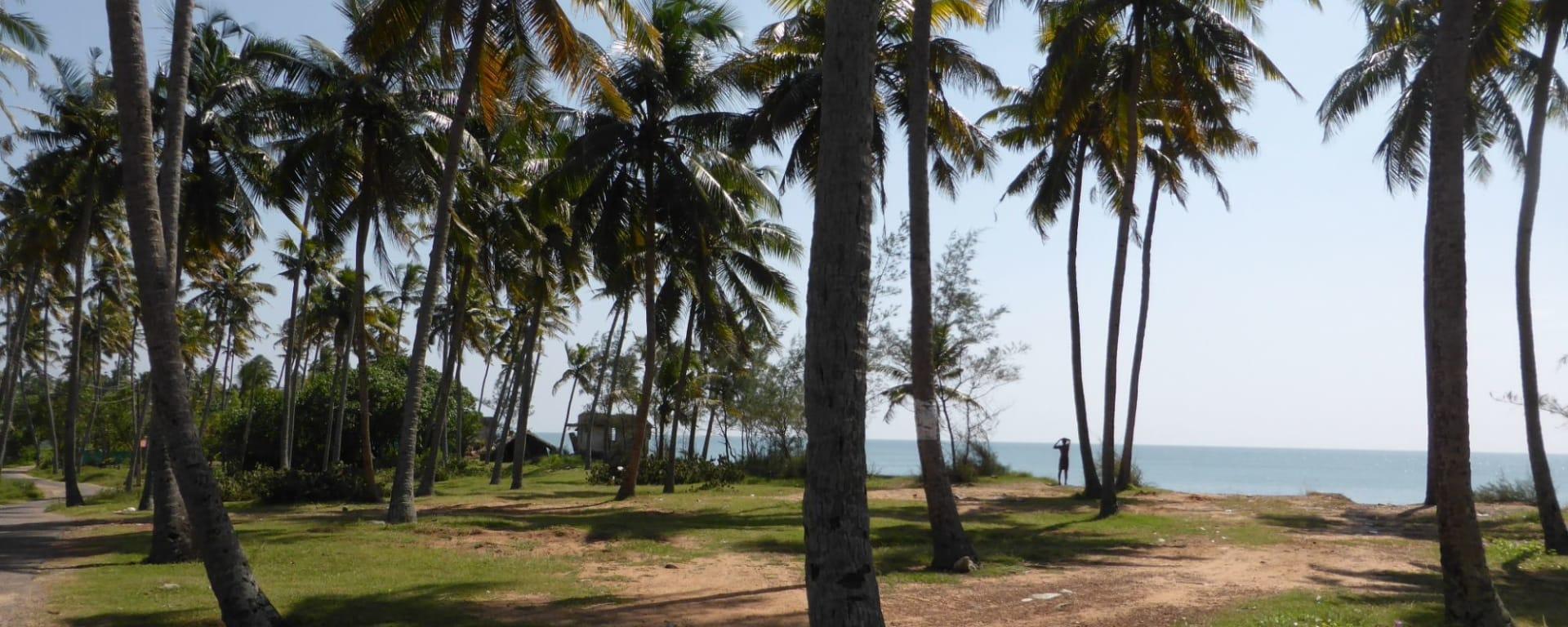 Tour à vélo à travers le Kerala de Kovalam: Palms Velotour Kerala