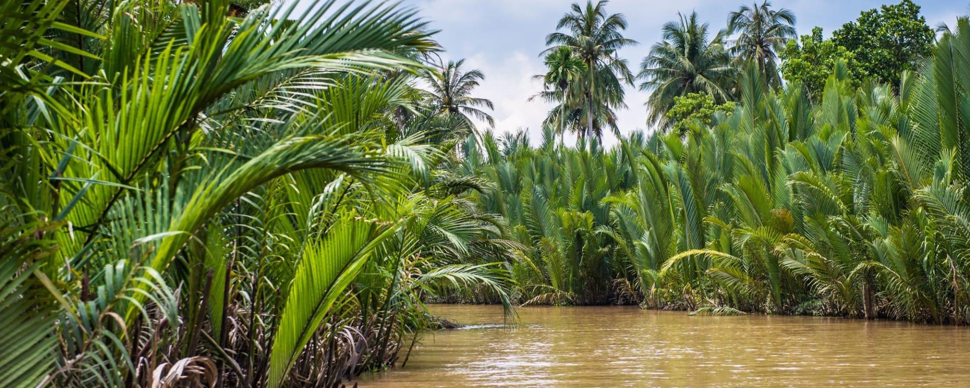 Le delta du Mékong – de Saigon à Phnom Penh: Mekong Delta: Beautiful nature
