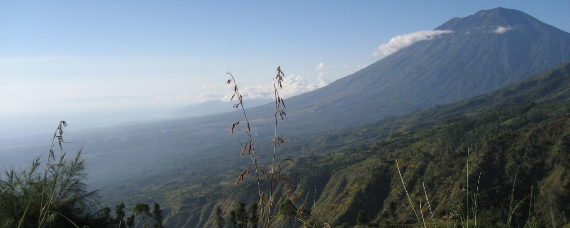 Trekking im Hochland Balis in Ubud: Trekking Karin Vogt