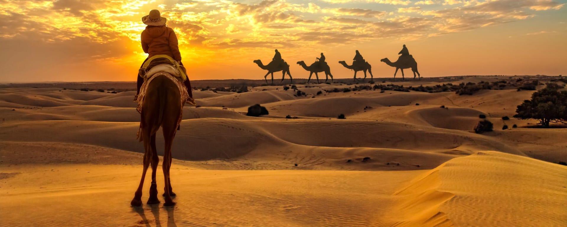 Tout savoir sur les voyages et les vacances en Inde: Thar Desert Camel Caravan