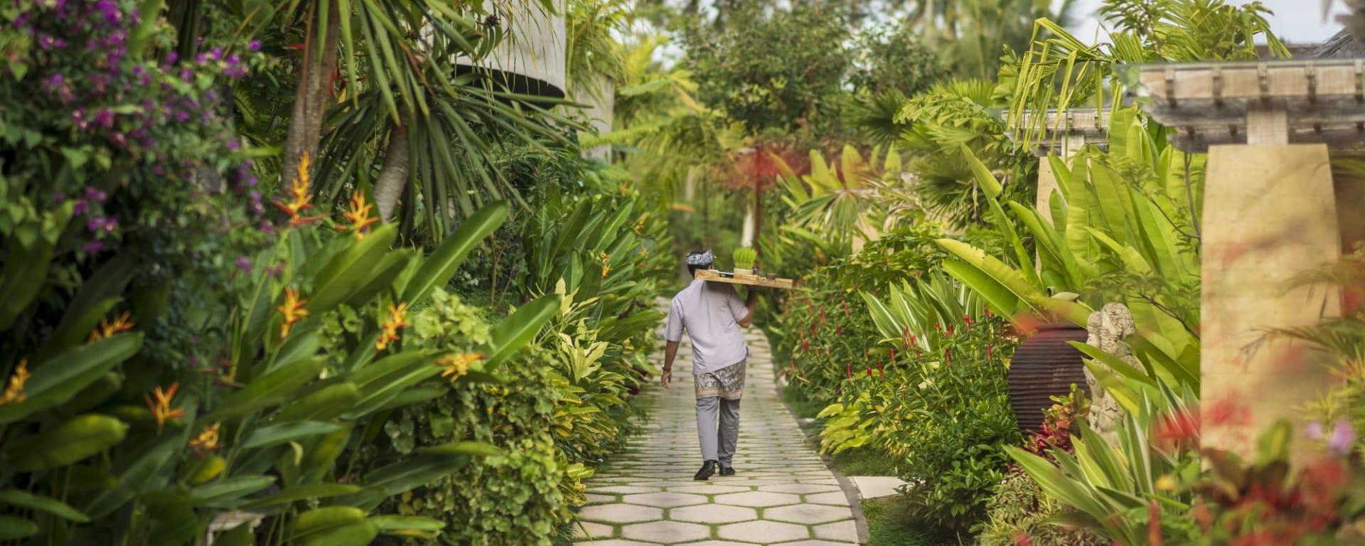 Wapa di Ume Sidemen à Ouest de Bali: Walking path at Wapa di Ume Sidemen