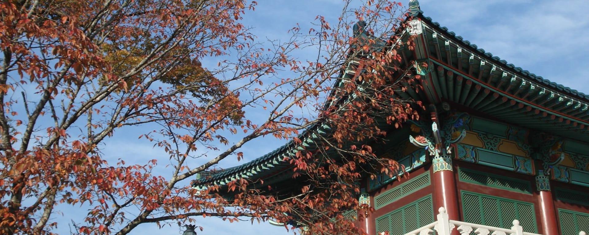 Stadtrundfahrt Seoul: Südkorea (1)