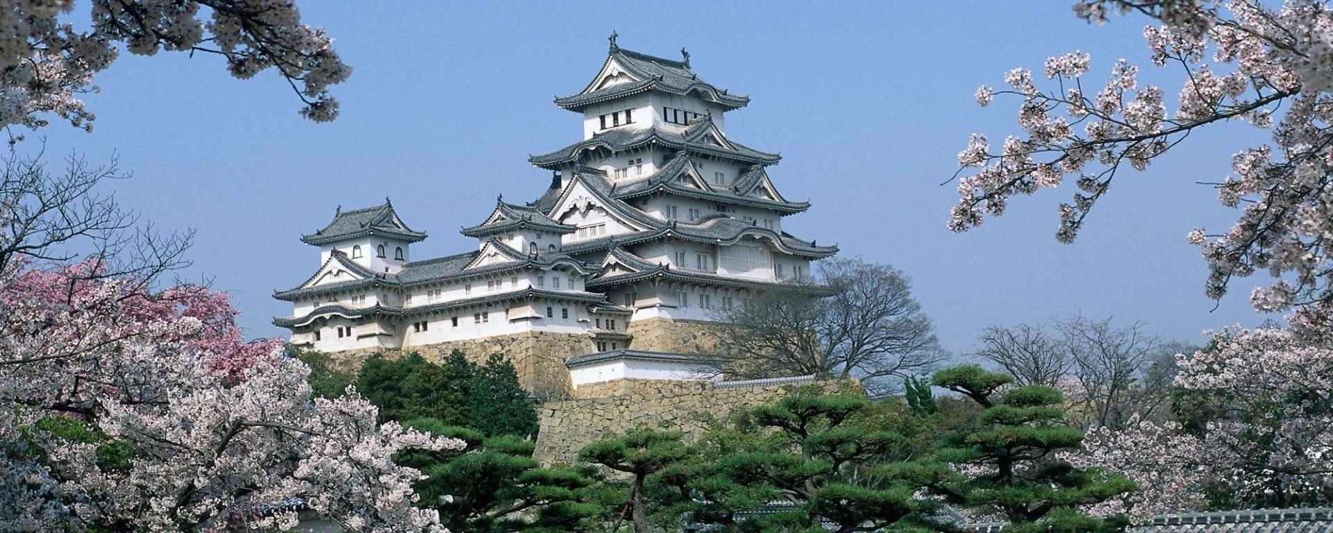 Circuit en groupe «Fuji» de Kyoto: Himeji: Castle