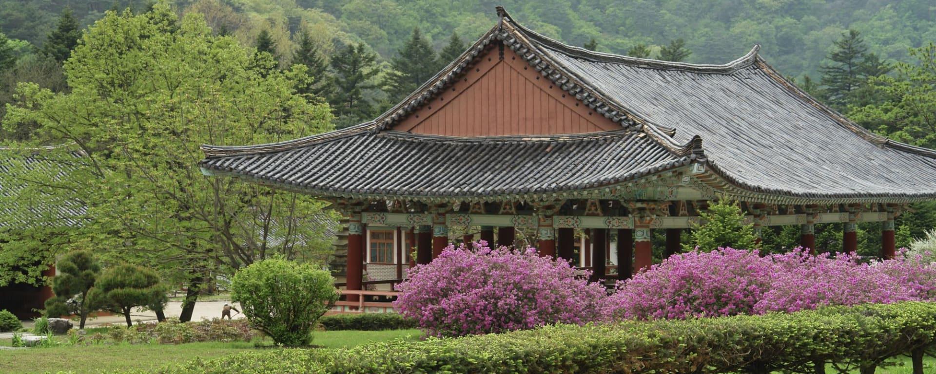 Wissenswertes zu Nordkorea Reisen: Mt Myohyang Pohyon temple