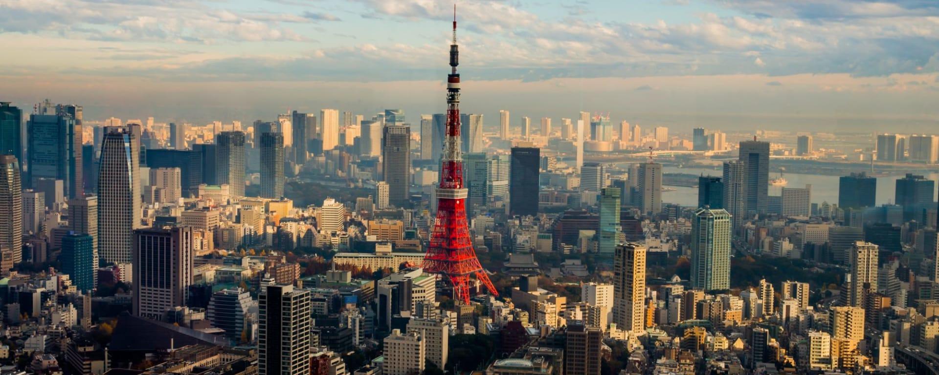 Contrastes du Japon de Tokyo: Tokyo: City view with Tower