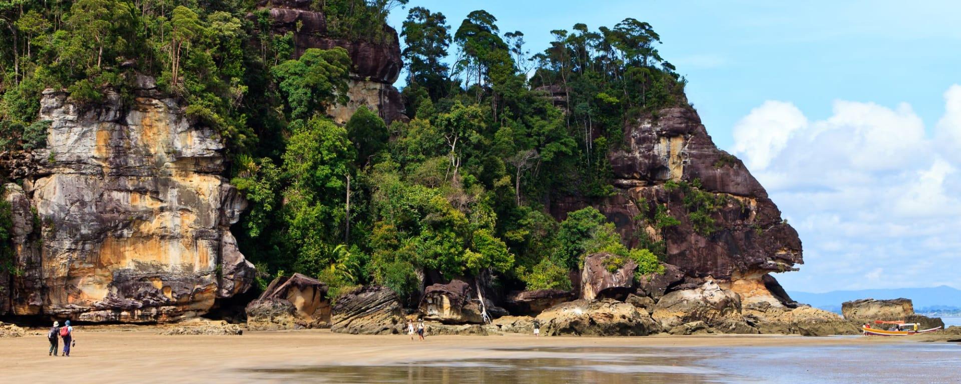 Les hauts lieux de Bornéo de Kuching: Bako National Park