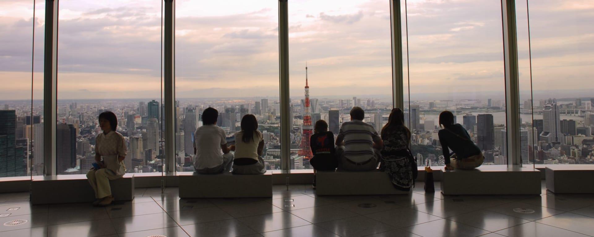 Circuit en groupe «L'éclat du Japon» de Tokyo: Tokyo