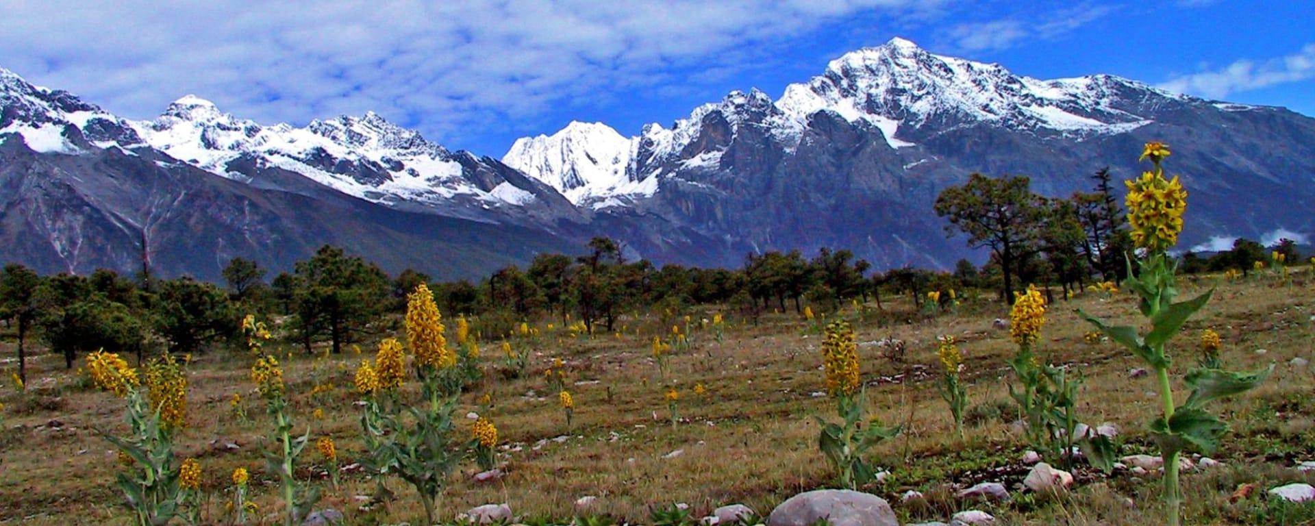 Les hauts lieux du Yunnan de Kunming: Lijiang: Snow Mountain