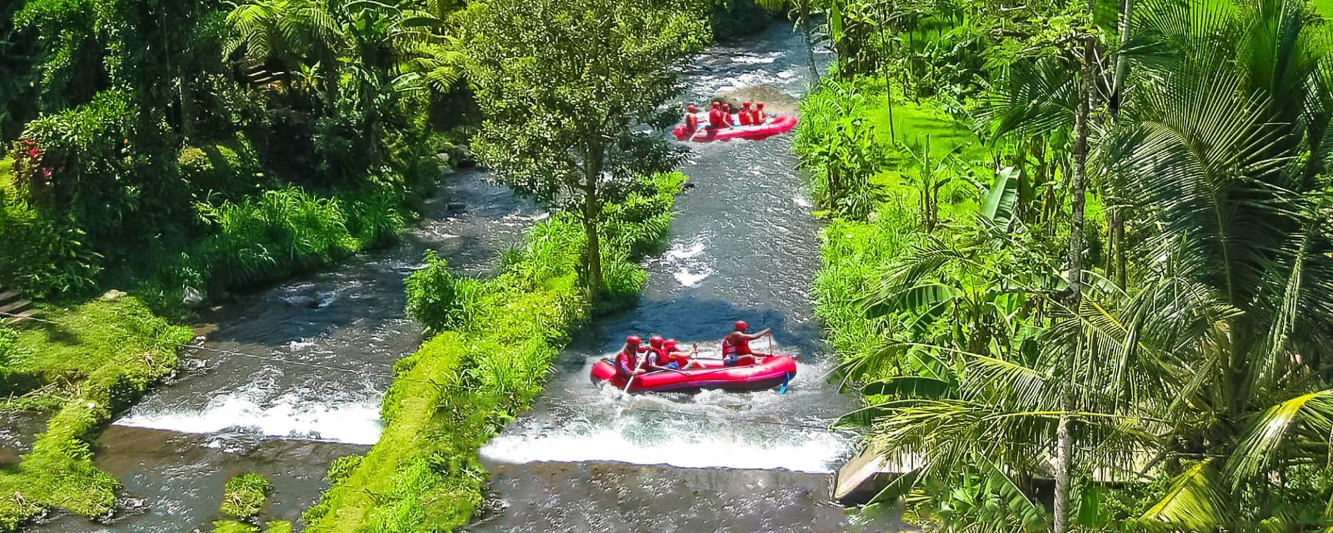 Découverte active de Bali de Sud de Bali: Bali - Rafting in the canyon