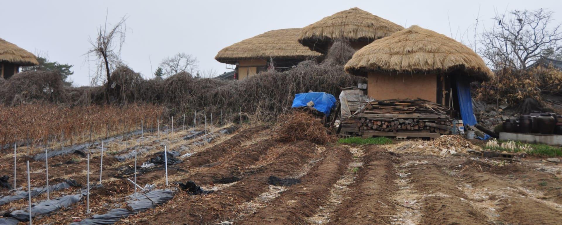 Südkorea - Grosse Mietwagenrundreise ab Seoul: Andong Hahoe Folk village