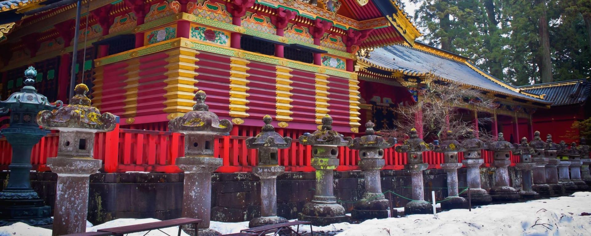 Tagesausflug nach Nikko in Tokio: Nikko: Toshogu Shrine