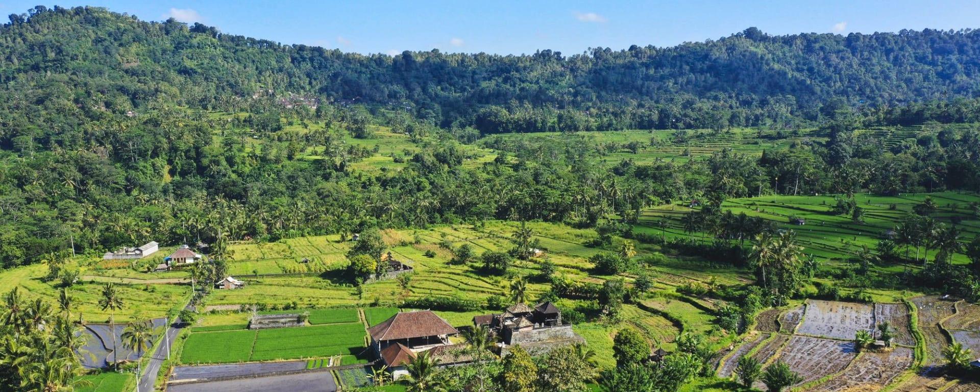 Nature et traditions à l'est de Bali de Sud de Bali: Bali View of beautiful rice fields at a cool resort of Sidemen Village
