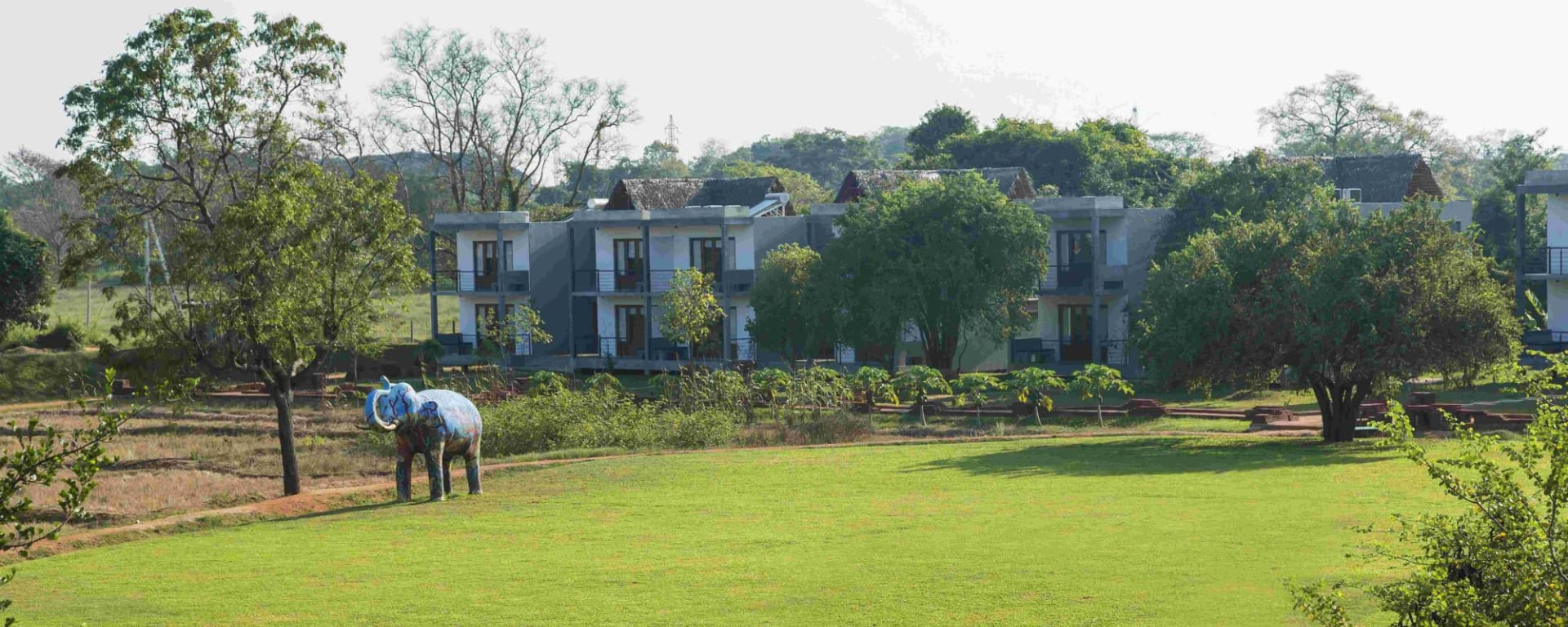 Aliya Resort & Spa in Sigiriya: Garden