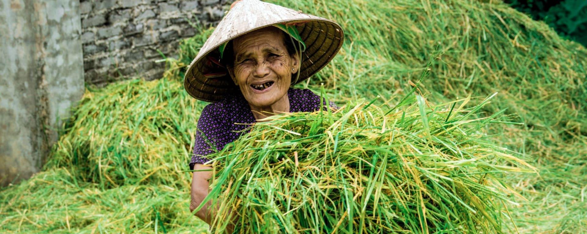 Impressionen Nordvietnams ab Hanoi: Ninh Binh