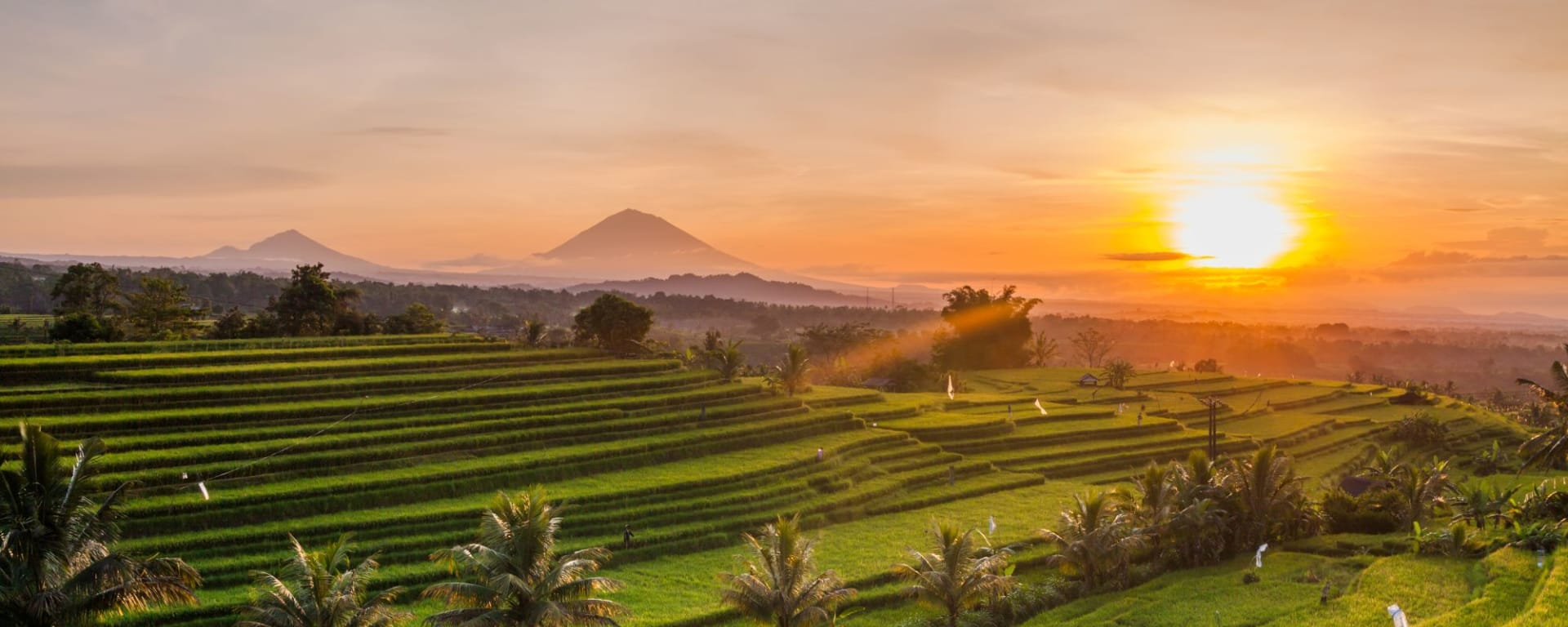 Bali Kompakt ab Südbali: Rice terraces at sunrise in Bali