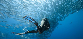 The 8 Best Locations to Visit for Scuba Divers