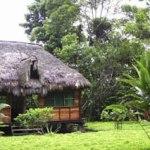 Suchipakari Amazon Hotel