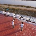 Lake Retba: The Pink Lake