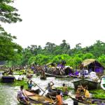 Guava Floating Market