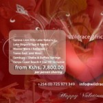 Cheap valentine Packagees,Kenya valentine Holiday packages