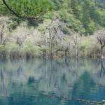 Travel Tips for Travellers to Jiuzhaigou Valley