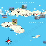 History of Flores Island