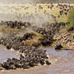 5 reasons to visit Tanzania