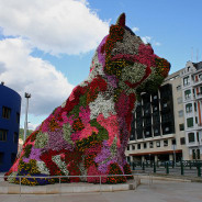 Northern Spain including Basque Country…Peaks, Pintxos and a giant Puppy!