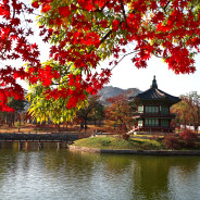 Why Seoul should be on your travel bucket list!