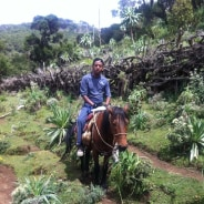Bale mountains , the Second Highest Mountain in Ethiopia