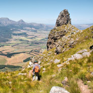 Get the Best of South Africa in Ten Days
