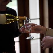 11 Most Attractive Wine Tours Around the World