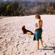 A Guide to the paradisiacal Galapagos Islands