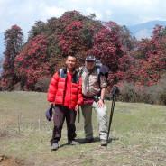 Rhododendron Trek in Nepal