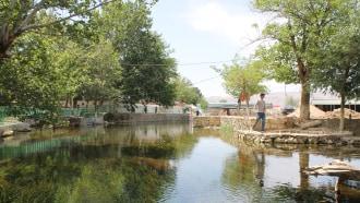 dushanbe-sightseeing