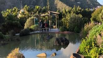 laspalmas-sightseeing
