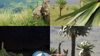 gondar-sightseeing