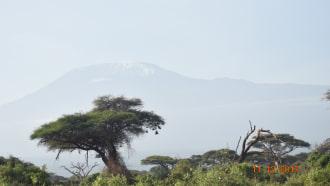 masaimara-sightseeing