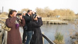 amman-sightseeing