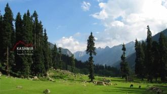 srinagar-sightseeing