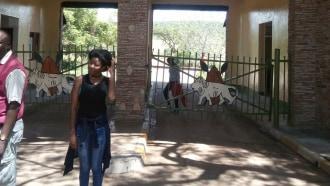 amboselinationalpark-sightseeing