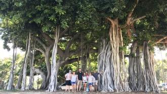 honolulu-sightseeing