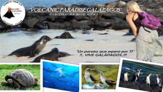 galapagosislands-sightseeing