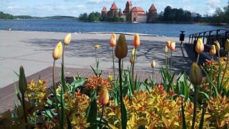 vilnius-sightseeing