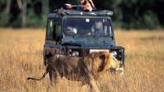 masaimara-sightseeing