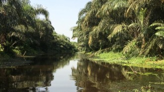cotonou-sightseeing