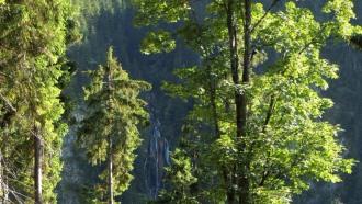 transylvania-sightseeing