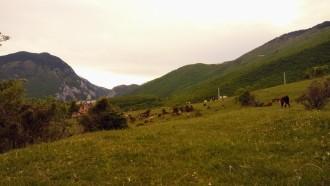 peje-sightseeing