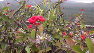 arbaminch-sightseeing